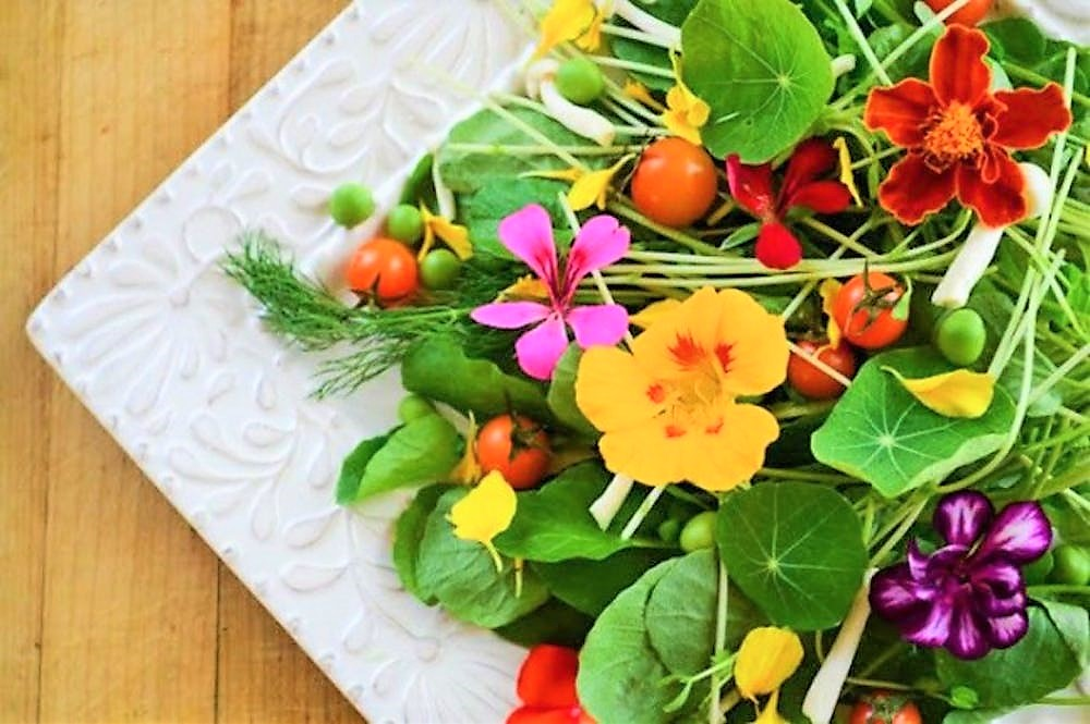 Conheça 42 Flores Comestíveis e seus Benefícios