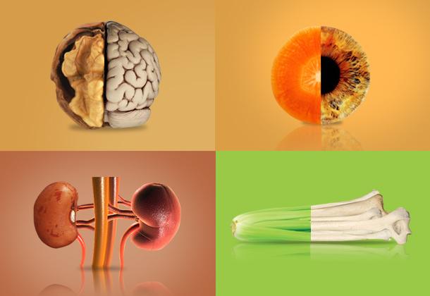 Conheça 7 Alimentos que Fazem bem ao Seu Corpo